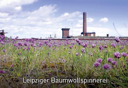 Leipziger Baumwollspinnerei